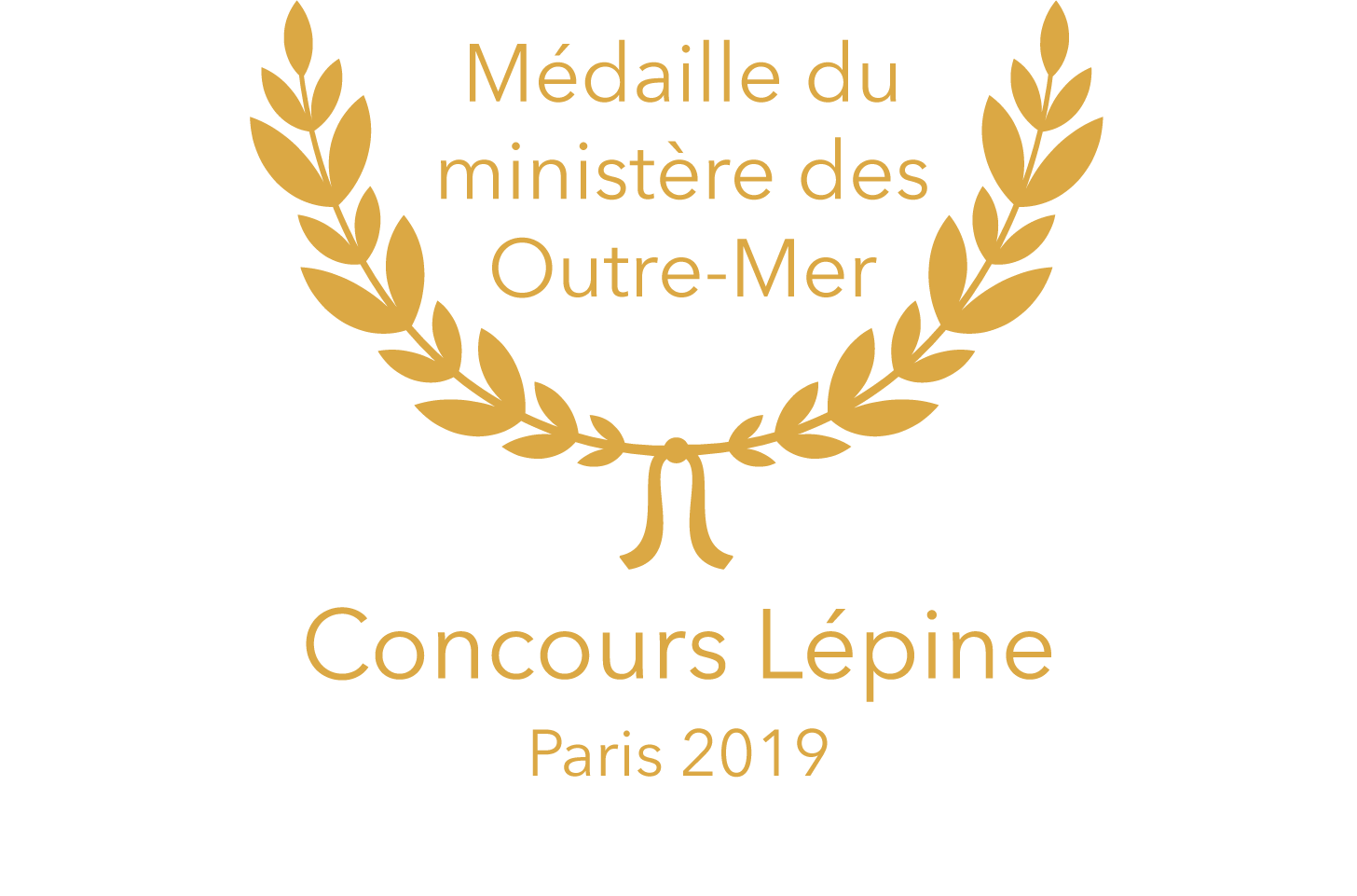 MEDAILLE MINISTERE LEPINEFichier 6@300x